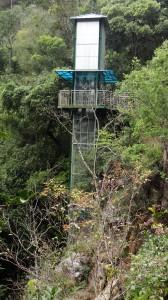 Dschungel Fahrstuhl - Datanla