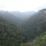 Fitzroy Falls - Valley