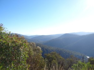 View Alpine NP