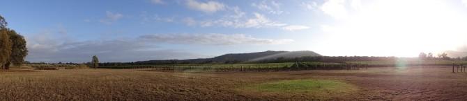 Weinwanderung im Hunter Valley