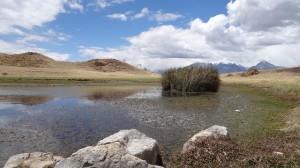 Lagune Wilcacocha